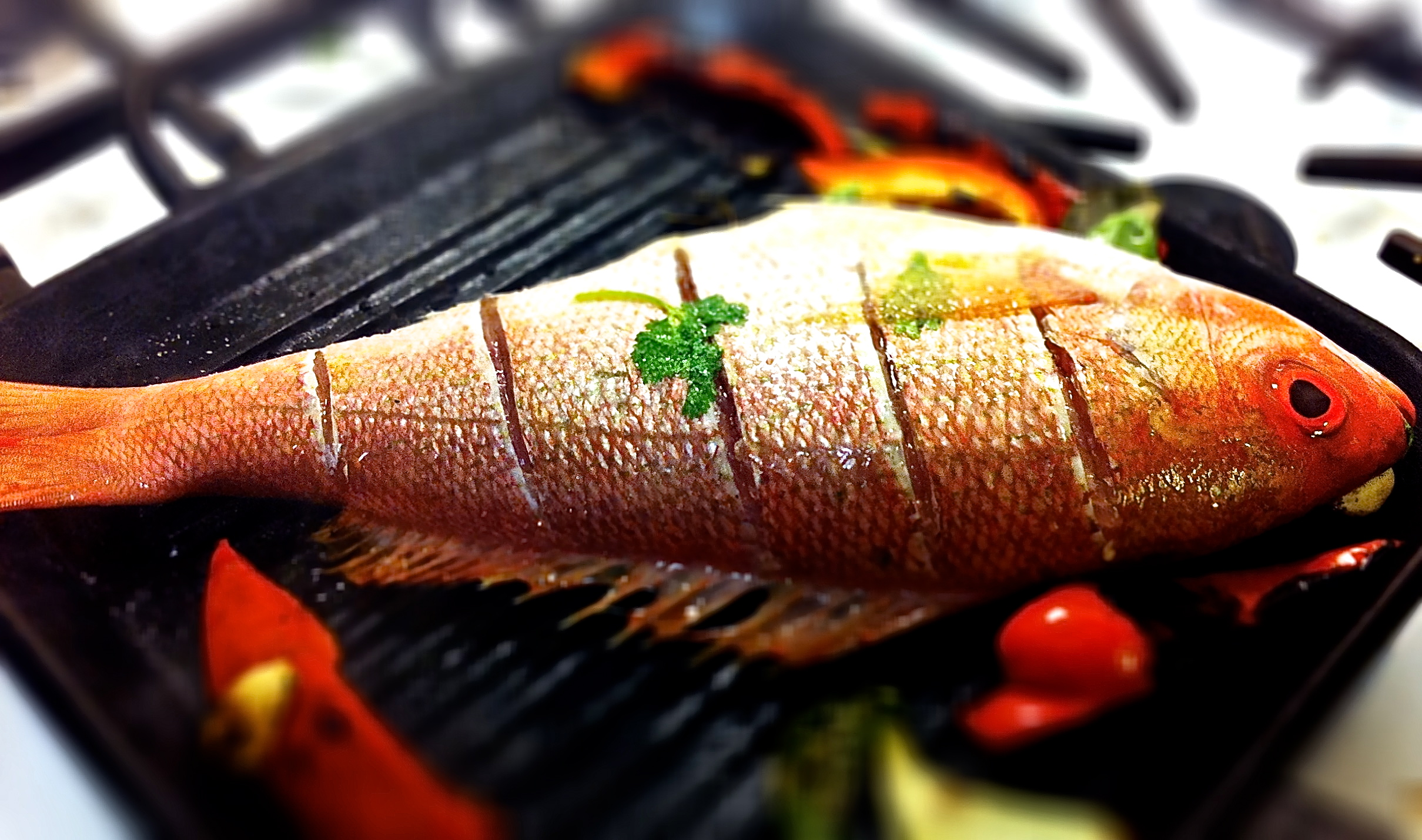 5 great grilled fish recipes enkivillage for The fish grill
