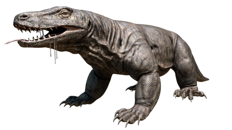 8 Giant Prehistoric Animals That Was Dominating the World ...